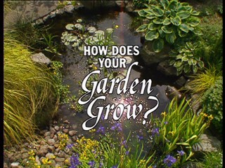 How Does Your Garden Grow?: Verney And David Naylor