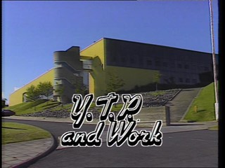 Life After School - Y.T.P. and Work