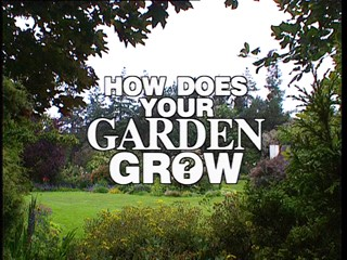 How Does Your Garden Grow?: Paddy Maitland