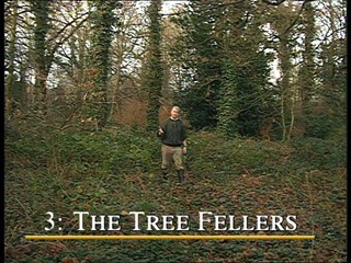 A Sense of Tradition: The Tree Fellers