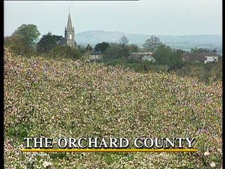 McGilloway's Way: The Orchard County