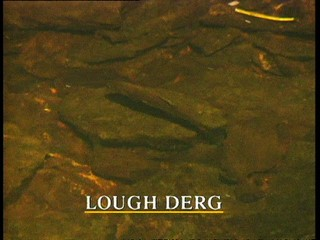 Lesser Spotted Ulster: Lough Derg