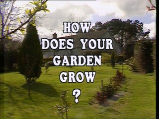 How Does Your Garden Grow?: Jack Murray