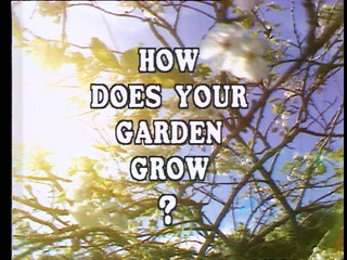 How Does Your Garden Grow?: Bob And Jean McCammond