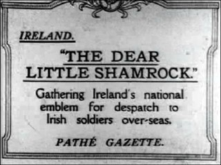 The Dear Little Shamrock