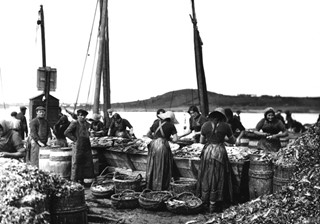 Curing Herrings at Ardglass